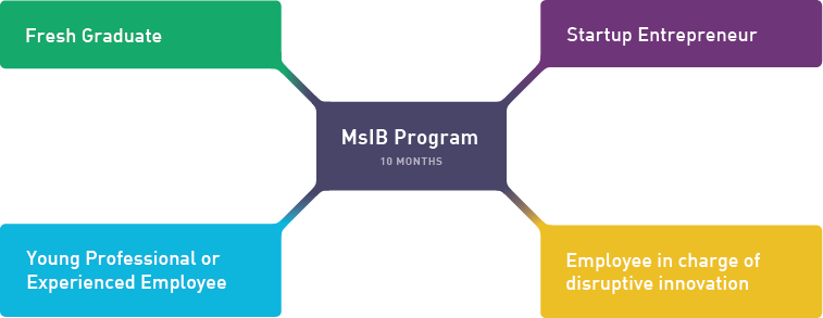Who is MSIB For?