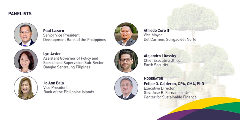 Financing and Valuation of Ecosystem-Based Adaptation in the Philippines Panelists